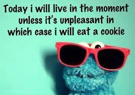 """Cookie Monster """"Today I will live in the moment..."""""""